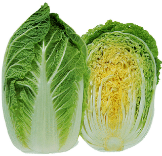 Empty nest...Let's Do Lunch: Napa Cabbage Salad