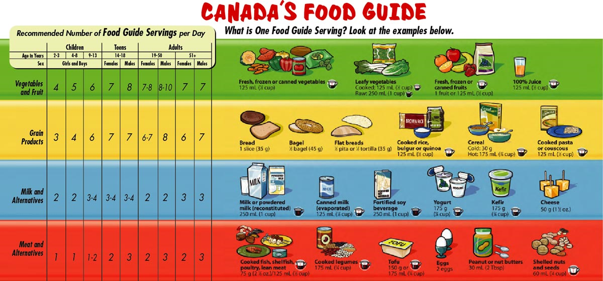 disadvantages of canada food guide Get an answer for 'what are the advantages and disadvantages of multiculturalism in canada ' and find homework help for other social sciences questions at enotes  and try their nice food.