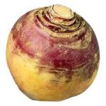 Rutabaga is a cross between a turnip and cabbage.